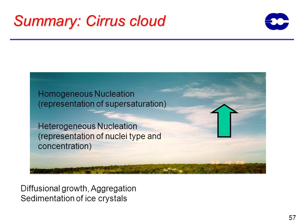 Summary: Cirrus cloud Homogeneous Nucleation