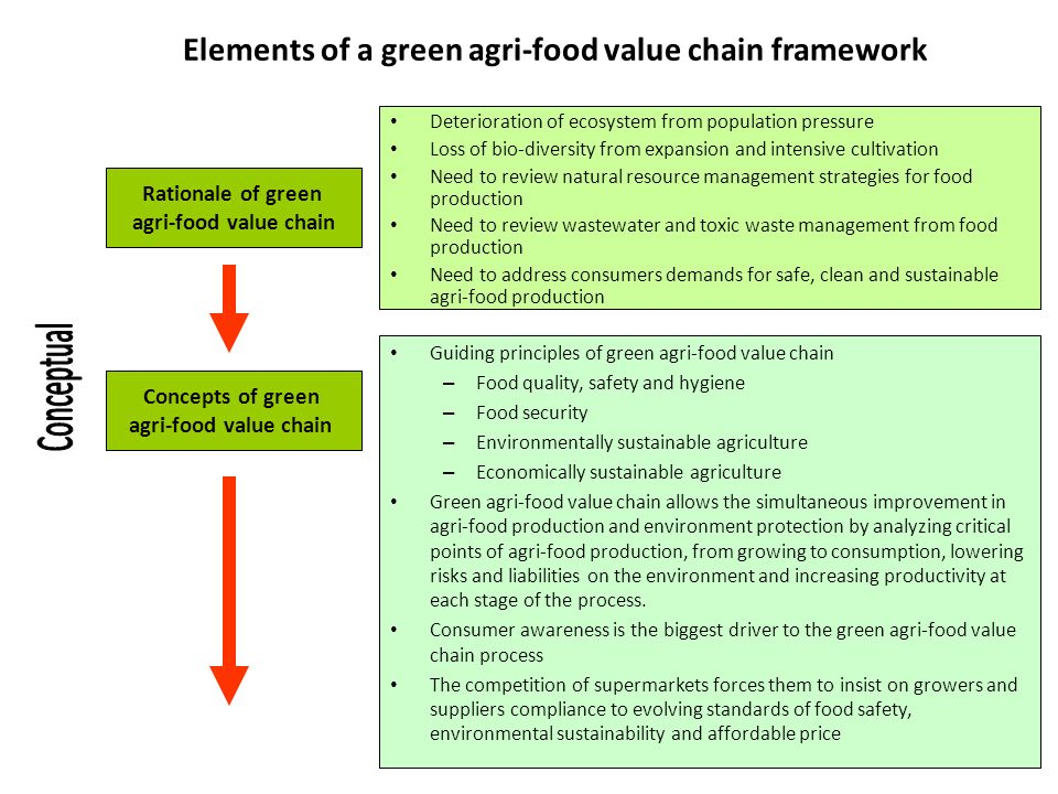Elements of a green agri-food value chain framework