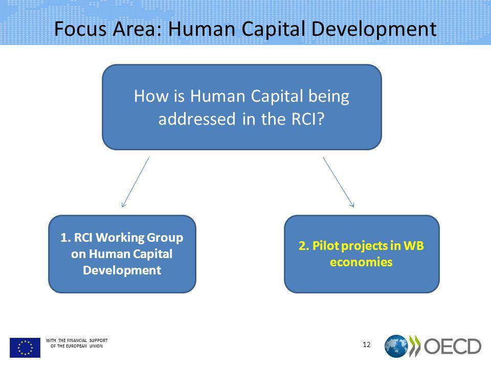 Focus Area: Human Capital Development
