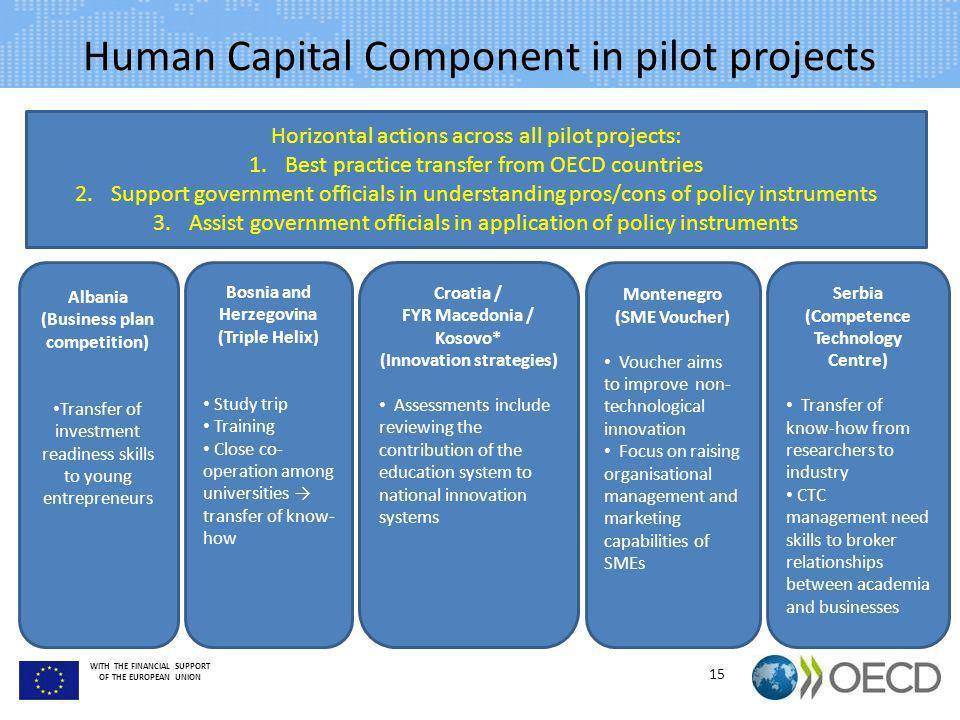 Human Capital Component in pilot projects