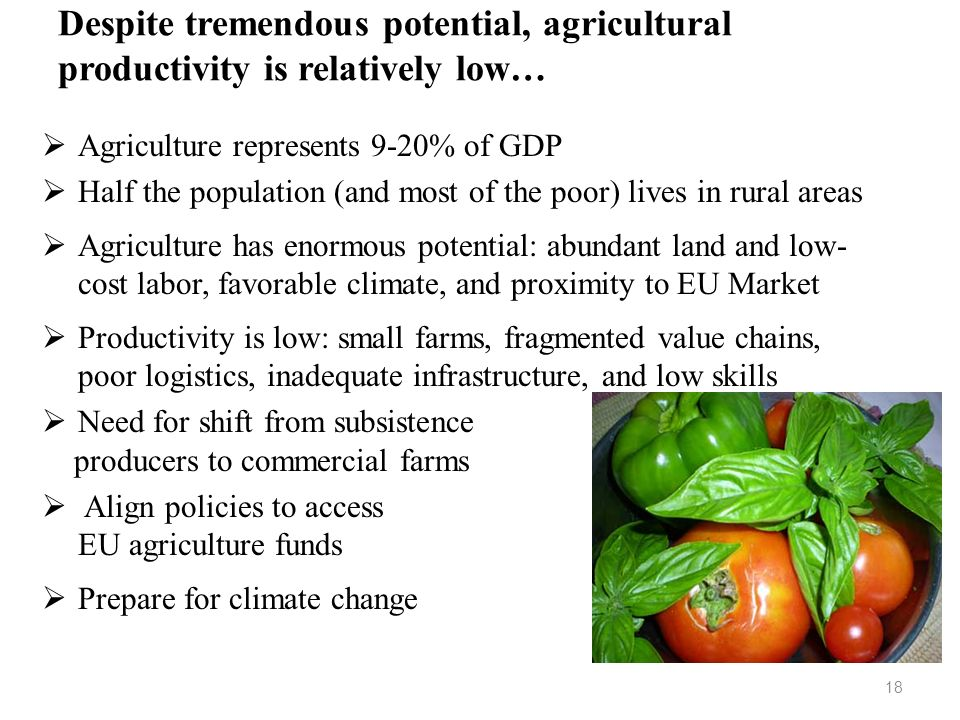Despite tremendous potential, agricultural productivity is relatively low…