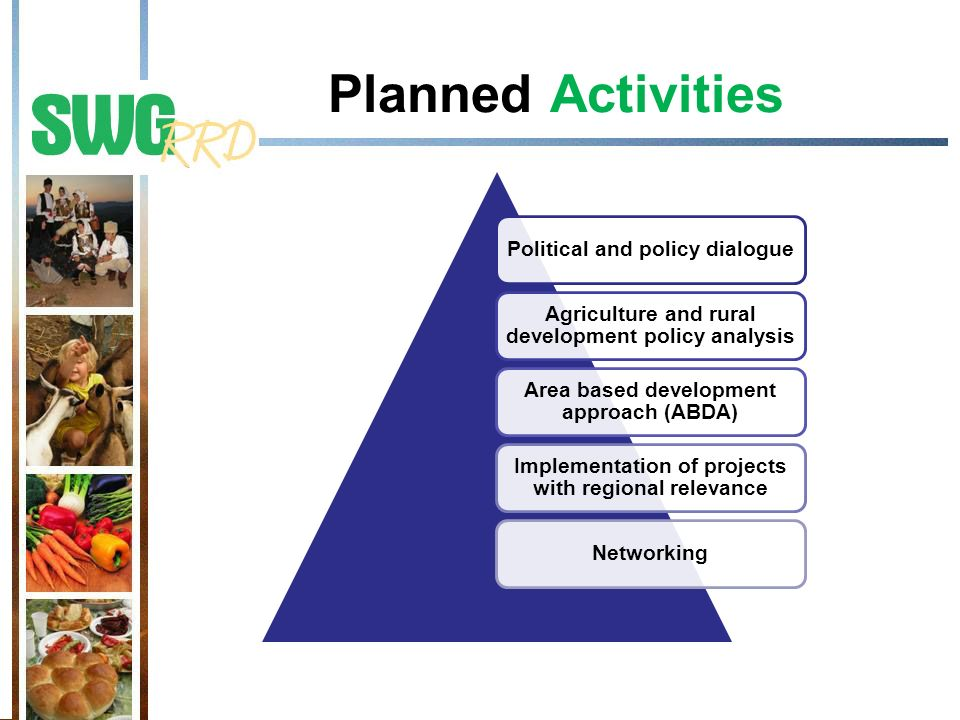 Planned Activities Political and policy dialogue