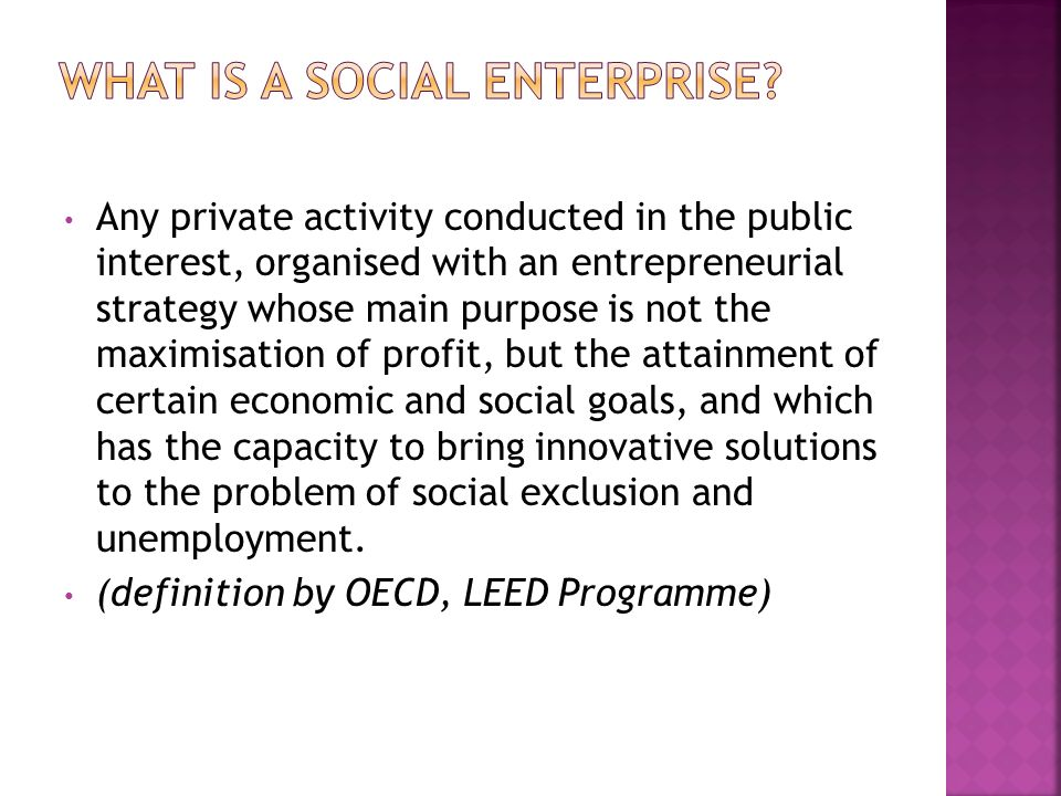 What is a social enterprise