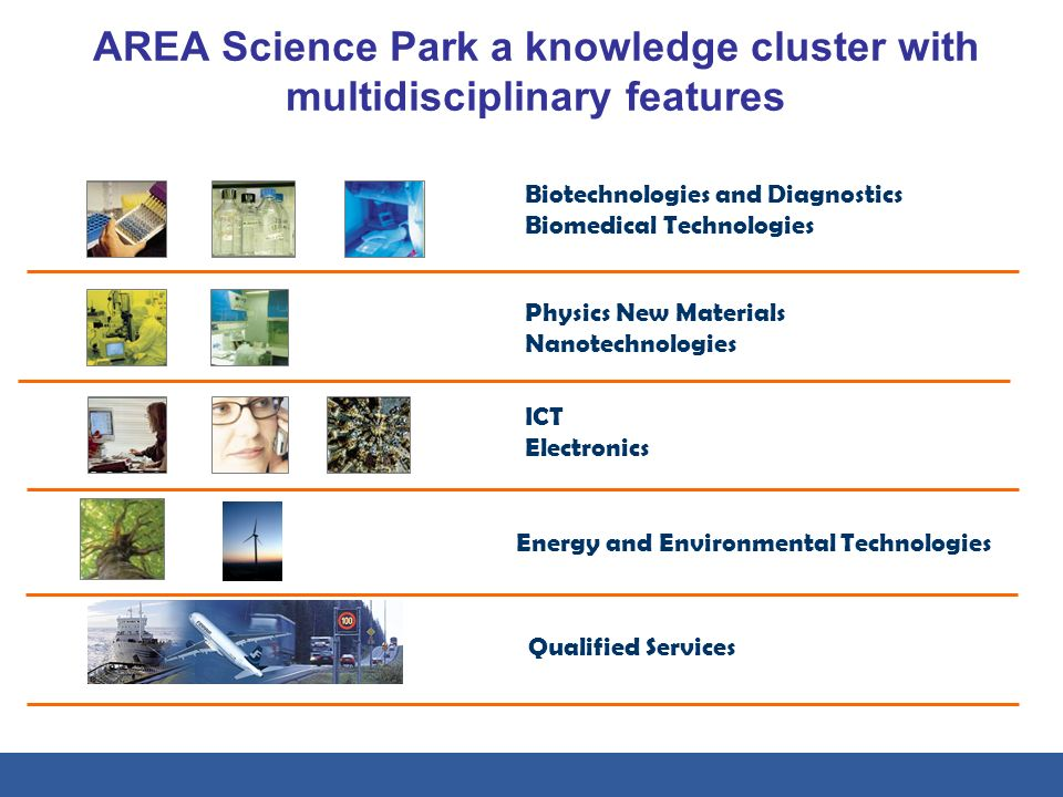 AREA Science Park a knowledge cluster with multidisciplinary features