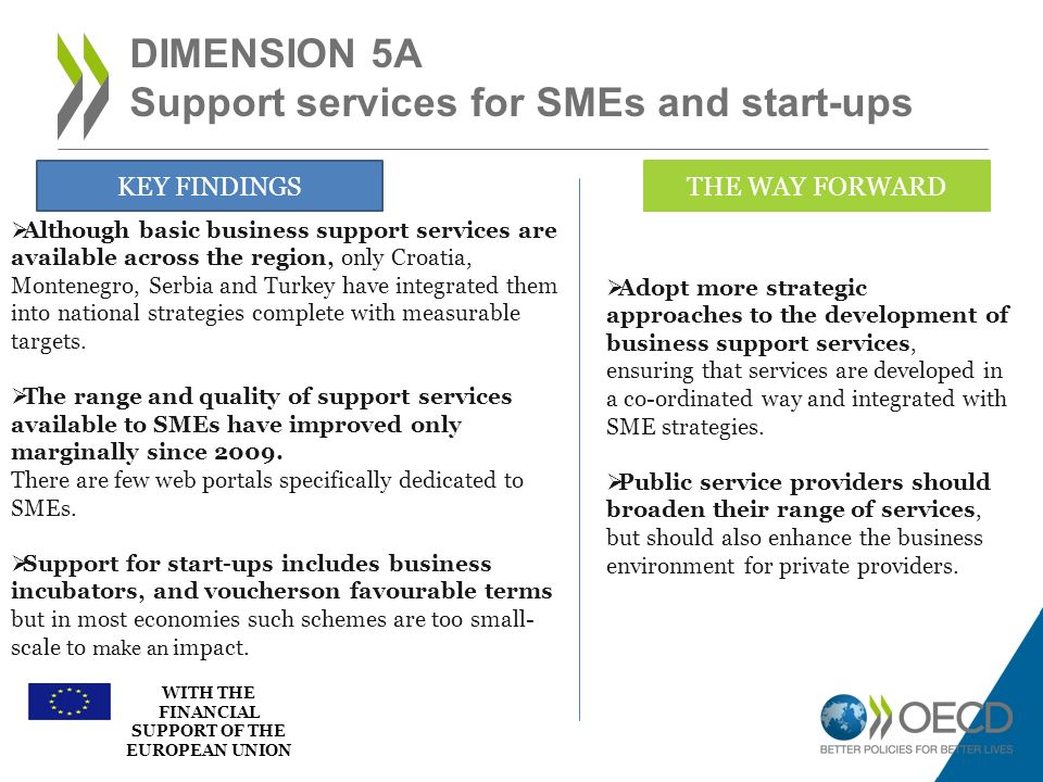 Dimension 5a Support services for SMEs and start-ups
