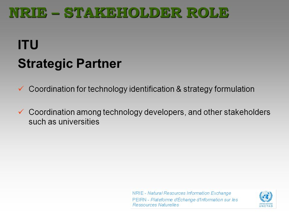 NRIE – STAKEHOLDER ROLE