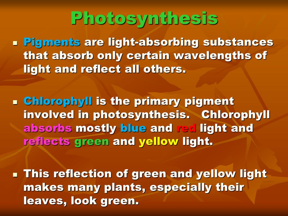 Photosynthesis Pigments are light-absorbing substances that absorb only certain wavelengths of light and reflect all others.