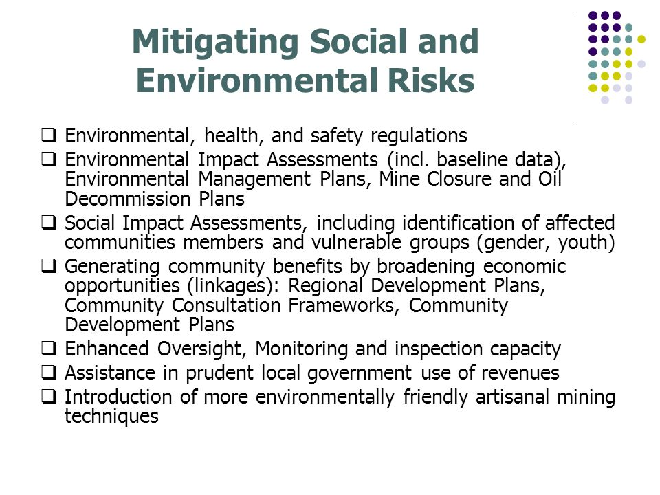 Mitigating Social and Environmental Risks