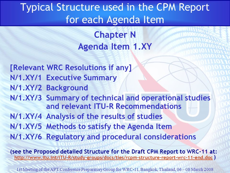 Typical Structure used in the CPM Report for each Agenda Item