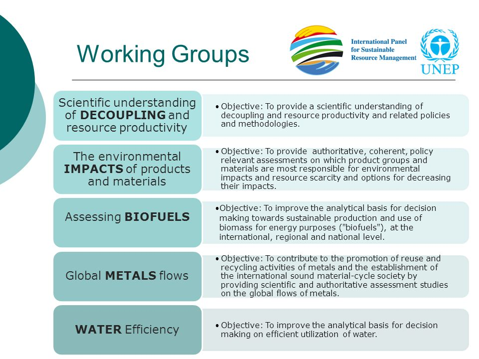 Working Groups Assessing biofuels
