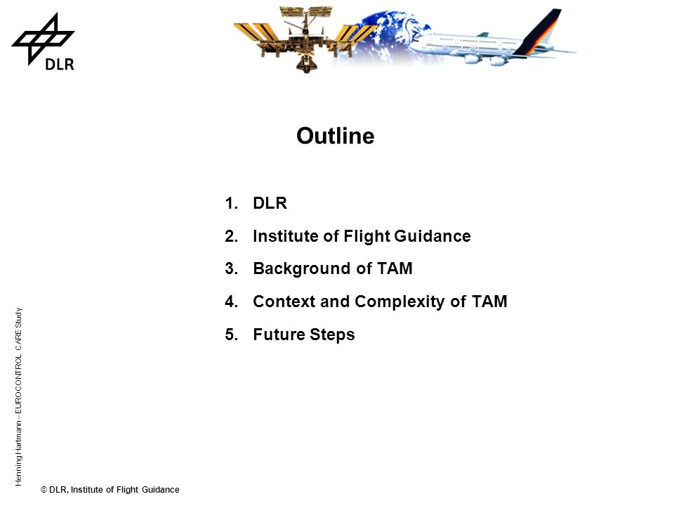 Outline DLR Institute of Flight Guidance Background of TAM