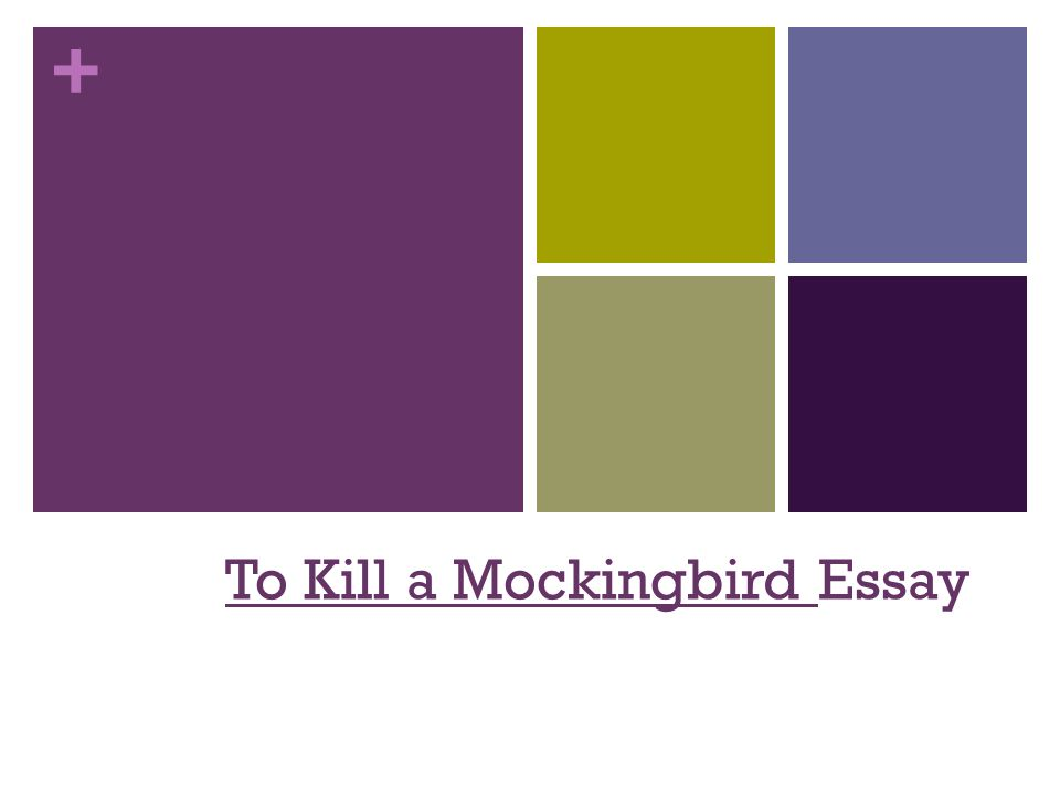 essay questions on to kill a mockingbird Harper lee was awarded the pulitzer prize in fiction in 1961 for her only novel, to kill a mockingbird, based to a large degree on her childhood experiences growing up in monroeville, alabama her father was a small-town lawyer like atticus finch, and an old house in her neighborhood was rumored to have a reclusive.