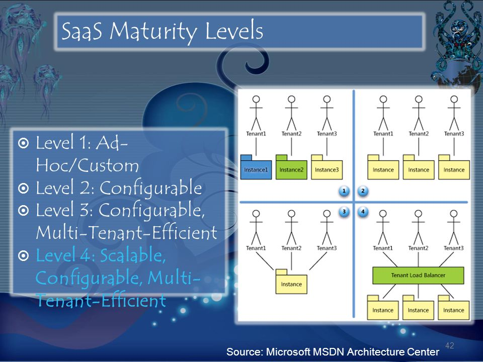 SaaS Maturity Levels Level 1: Ad-Hoc/Custom Level 2: Configurable