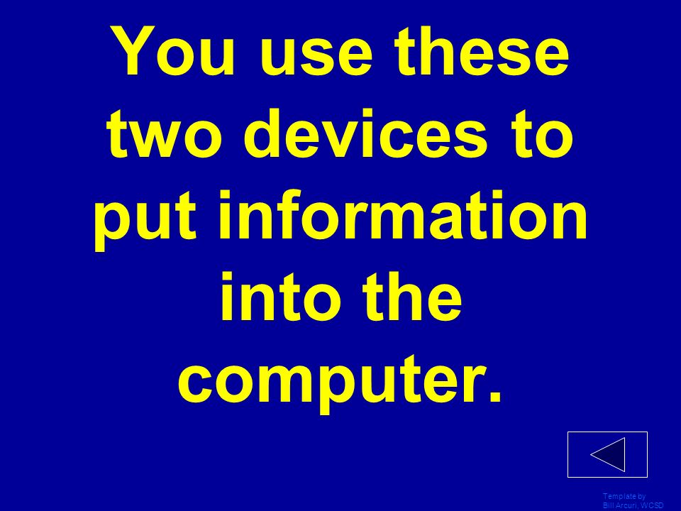 You use these two devices to put information into the computer.