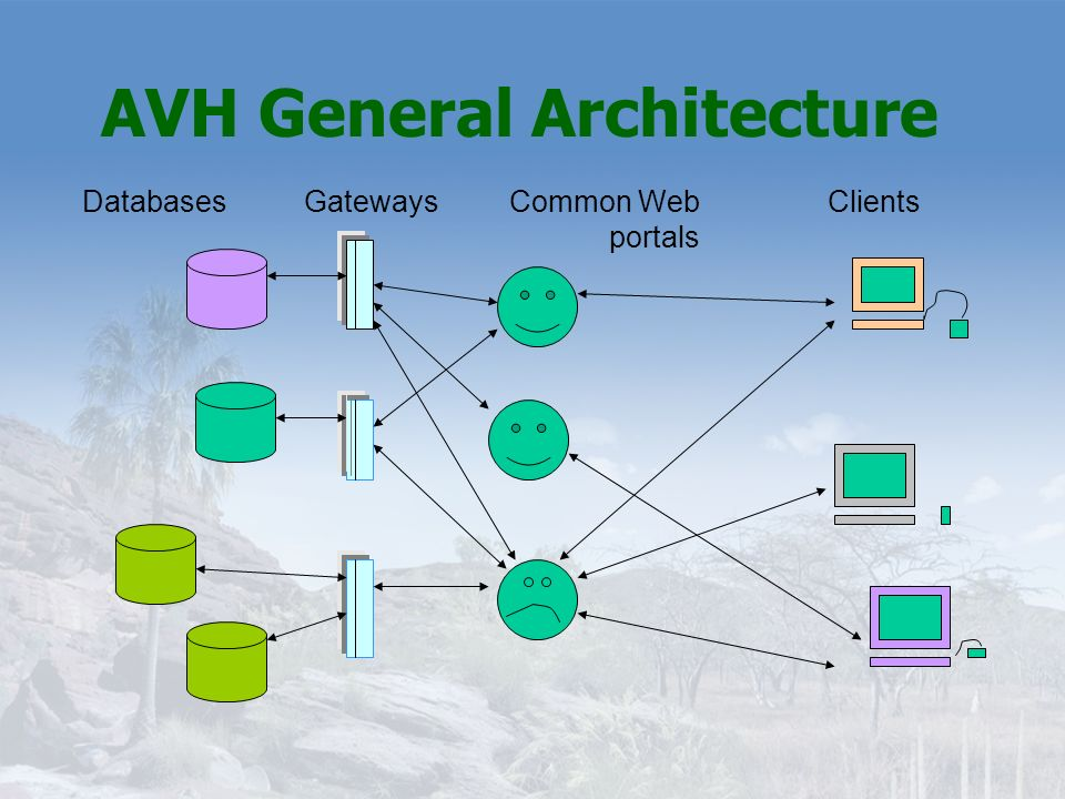 AVH General Architecture