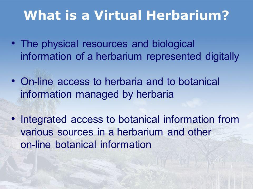 What is a Virtual Herbarium