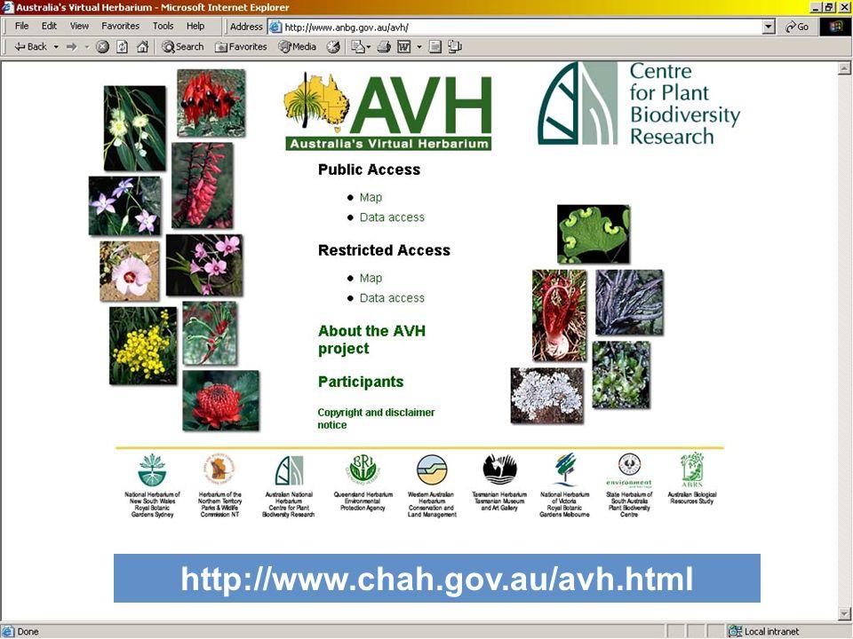 http://www.chah.gov.au/avh.html