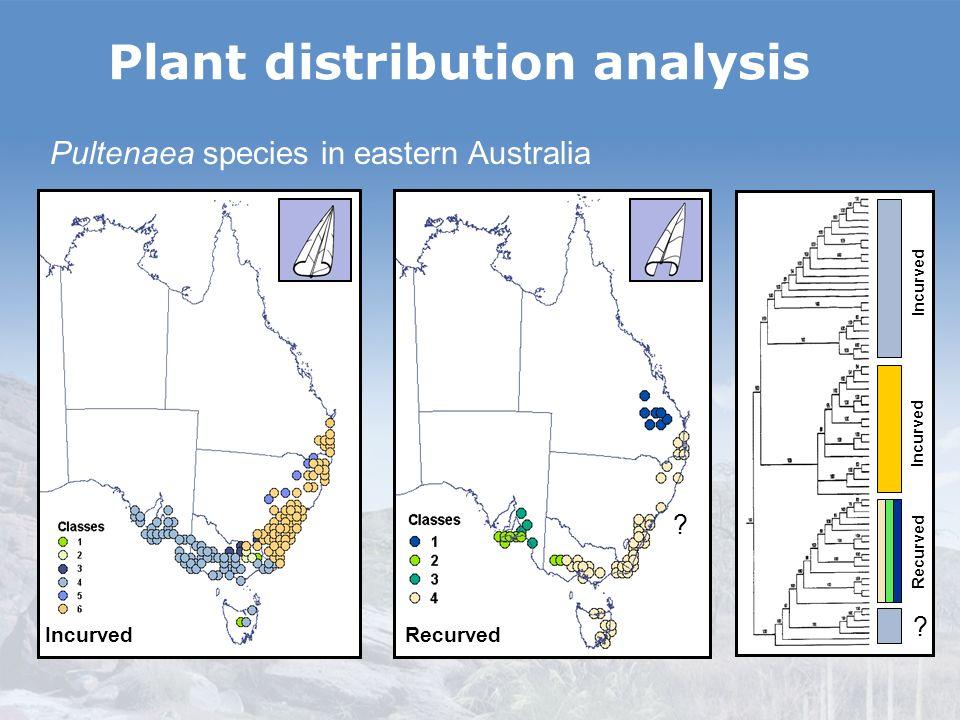 Plant distribution analysis