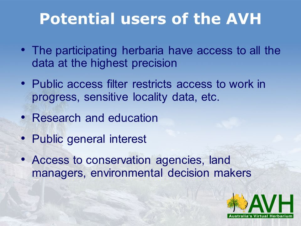 Potential users of the AVH