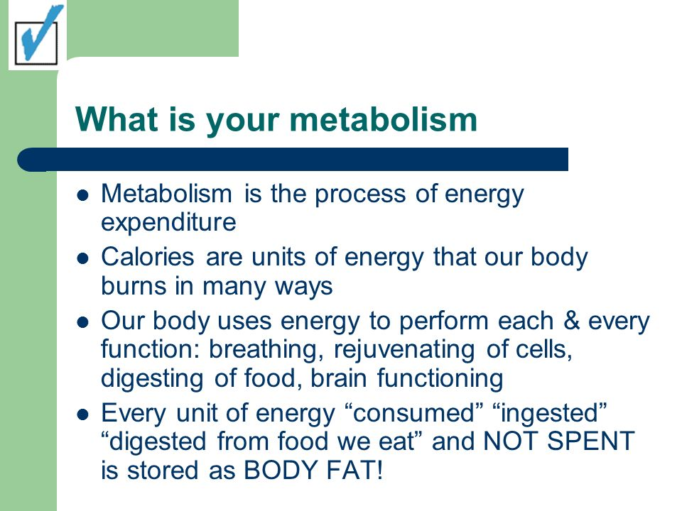 What is your metabolism