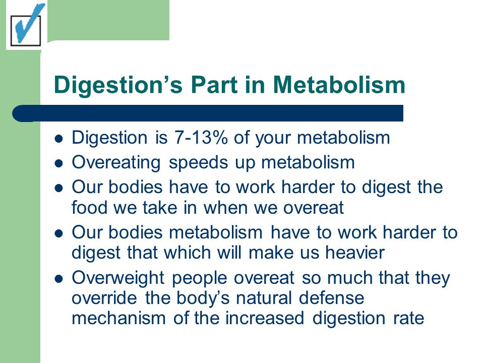 Digestion's Part in Metabolism