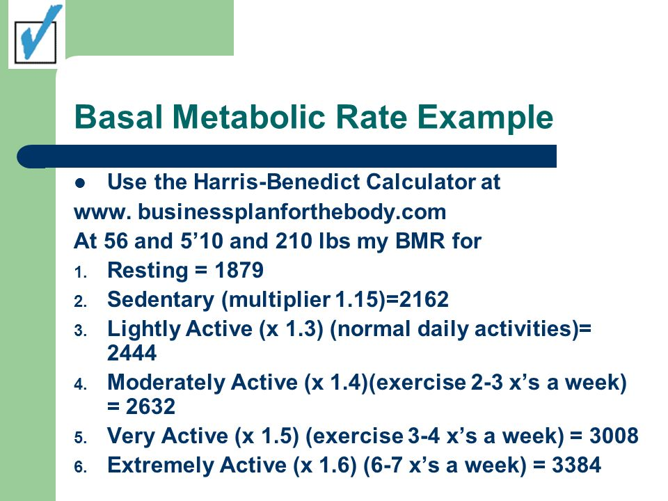 Basal Metabolic Rate Example