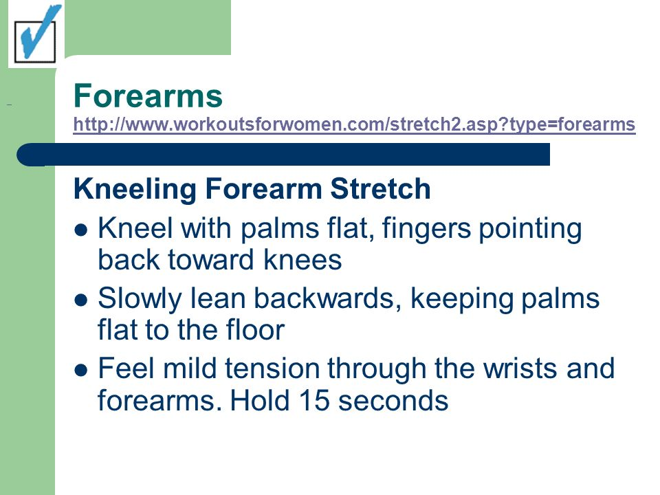 Forearms http://www.workoutsforwomen.com/stretch2.asp type=forearms