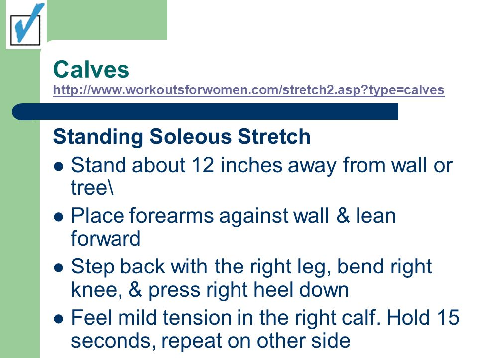 Calves http://www.workoutsforwomen.com/stretch2.asp type=calves