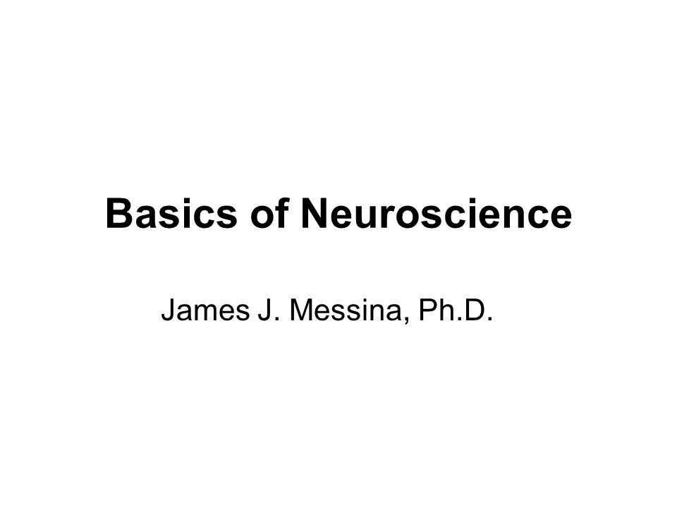 Basics of Neuroscience