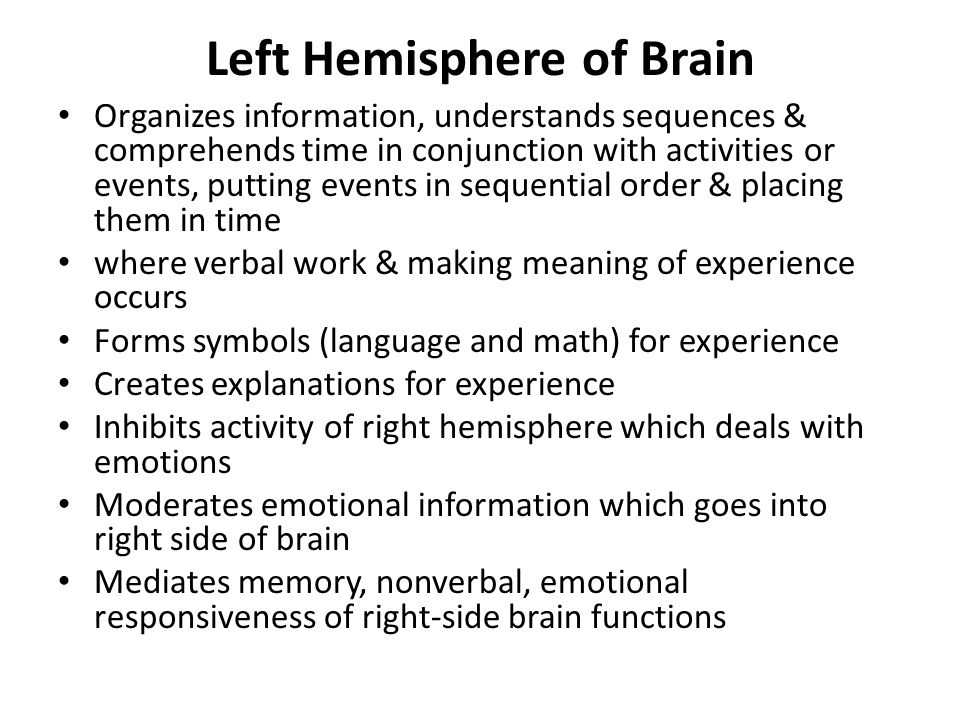 Left Hemisphere of Brain