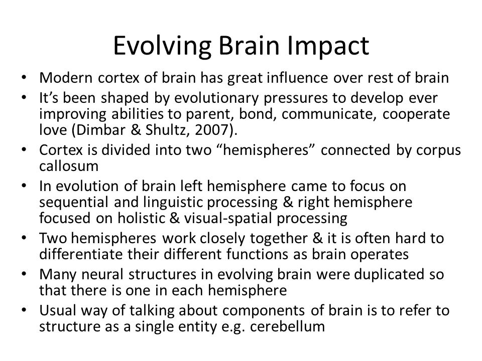 Evolving Brain Impact Modern cortex of brain has great influence over rest of brain.