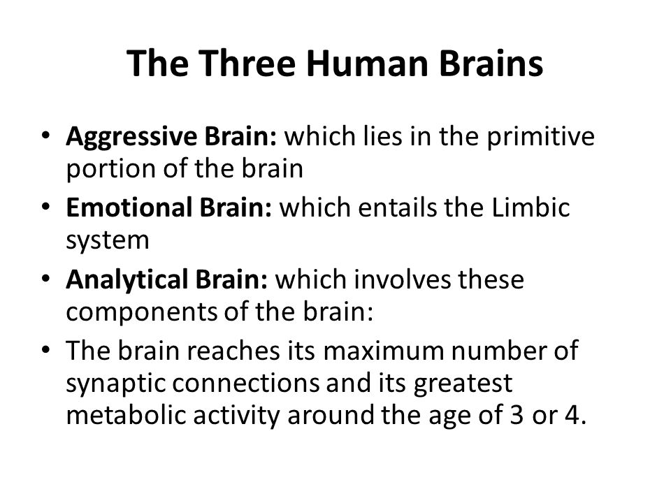 The Three Human Brains Aggressive Brain: which lies in the primitive portion of the brain. Emotional Brain: which entails the Limbic system.