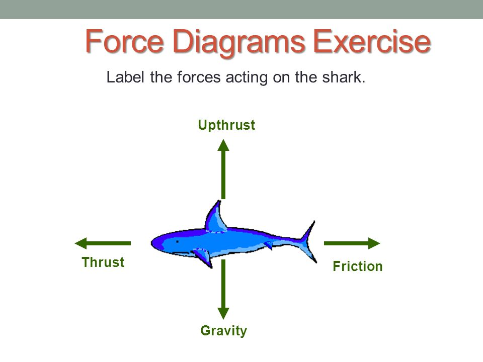 Cars And Forces - Gravity. - ppt video online download