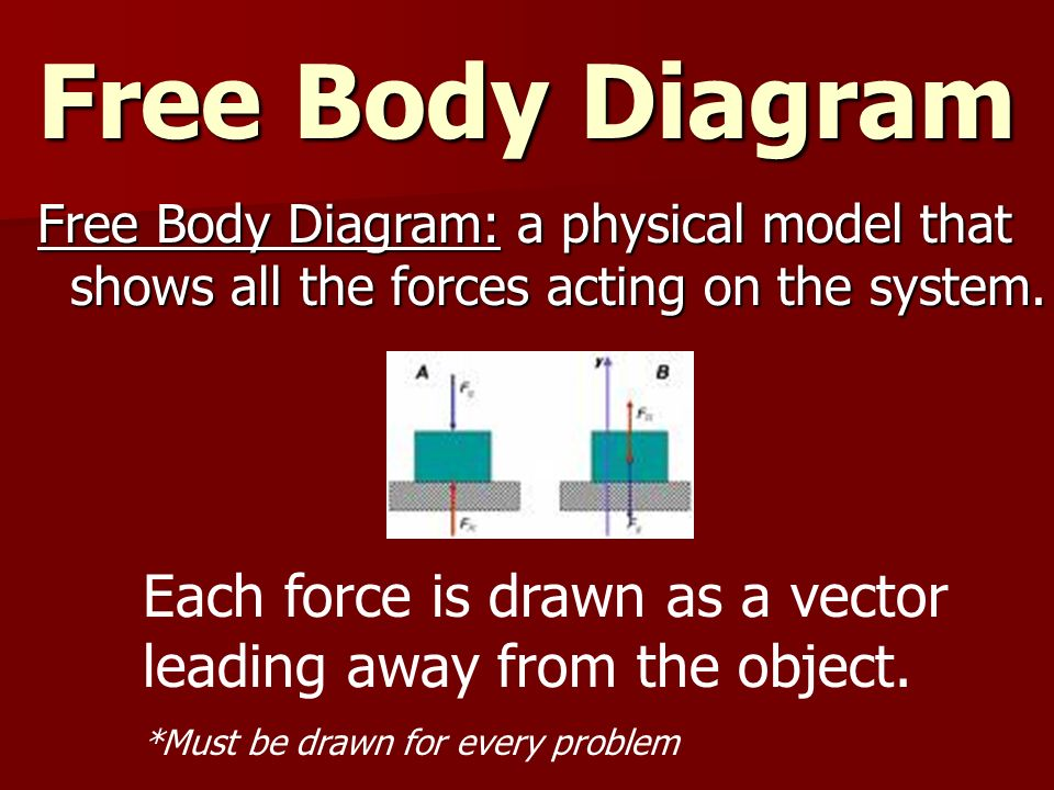Free Body Diagram Free Body Diagram: a physical model that shows all the forces acting on the system.
