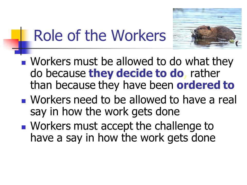 Role of the Workers Workers must be allowed to do what they do because they decide to do, rather than because they have been ordered to.