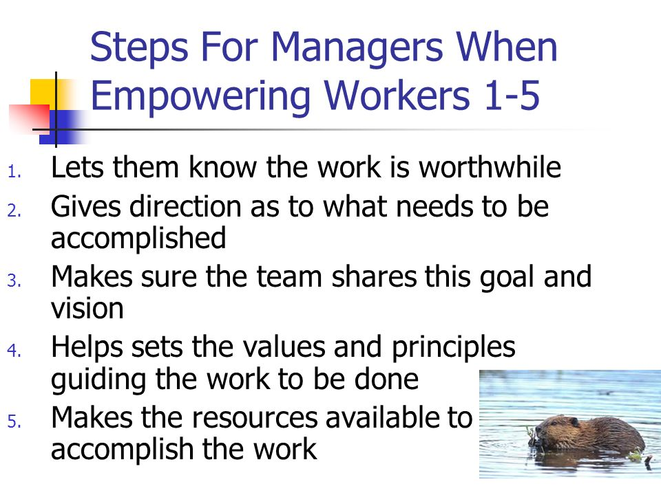 Steps For Managers When Empowering Workers 1-5