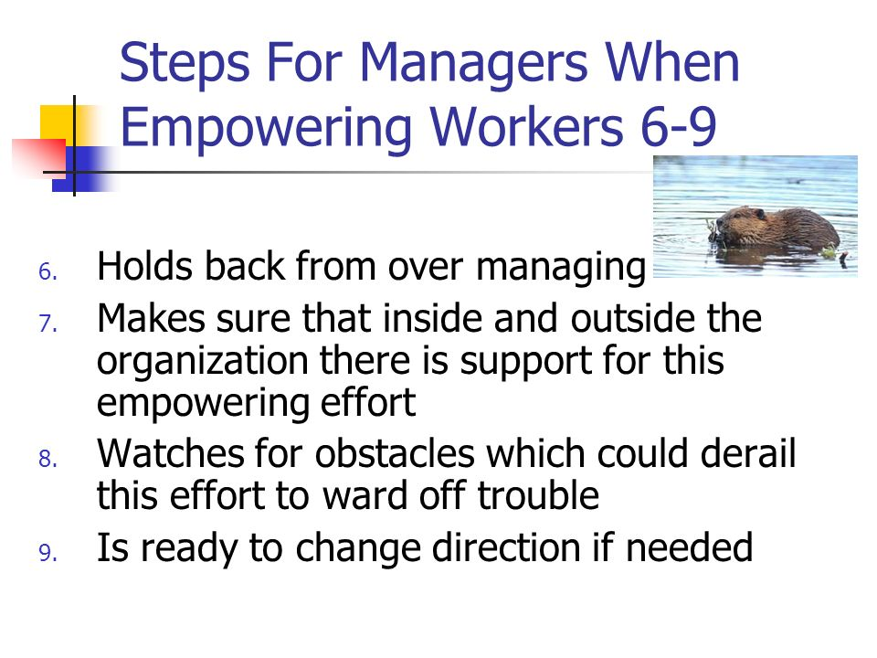 Steps For Managers When Empowering Workers 6-9