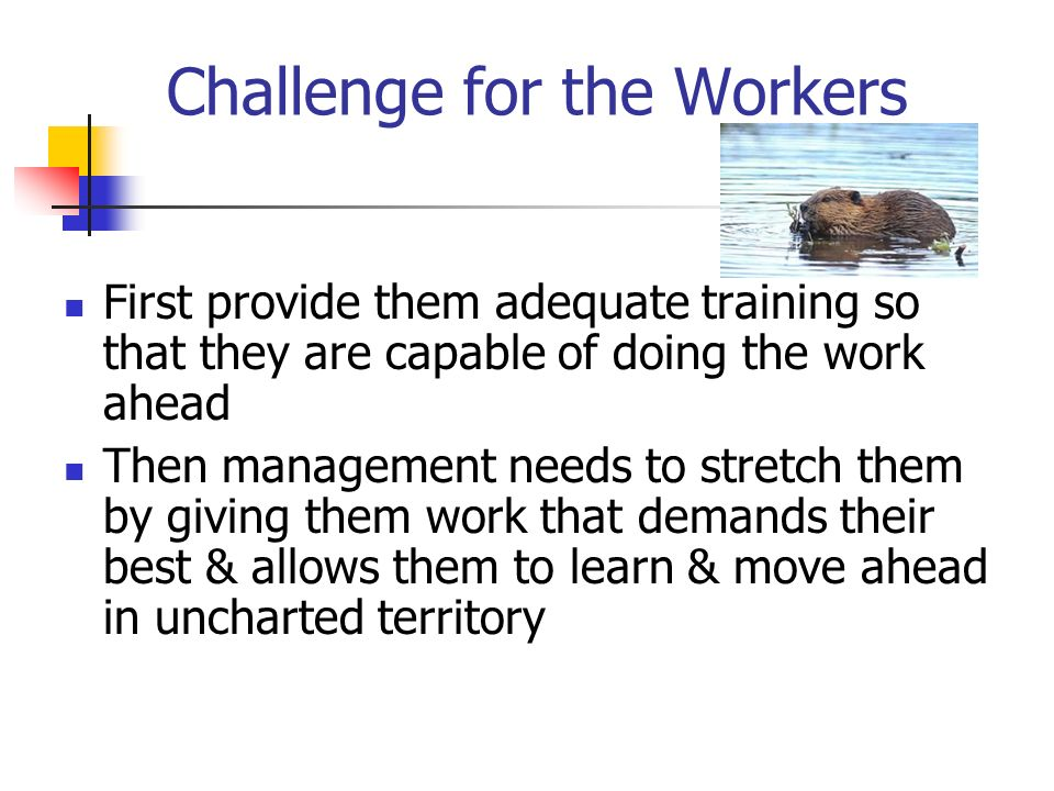 Challenge for the Workers