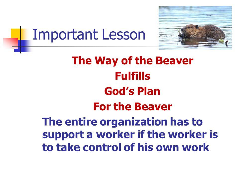 Important Lesson