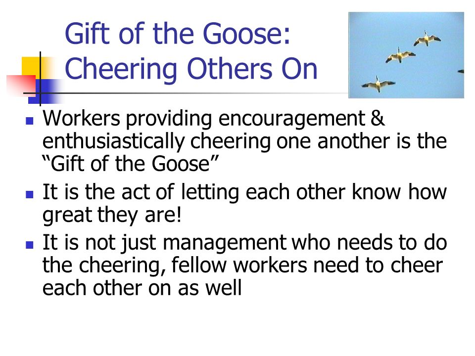 Gift of the Goose: Cheering Others On