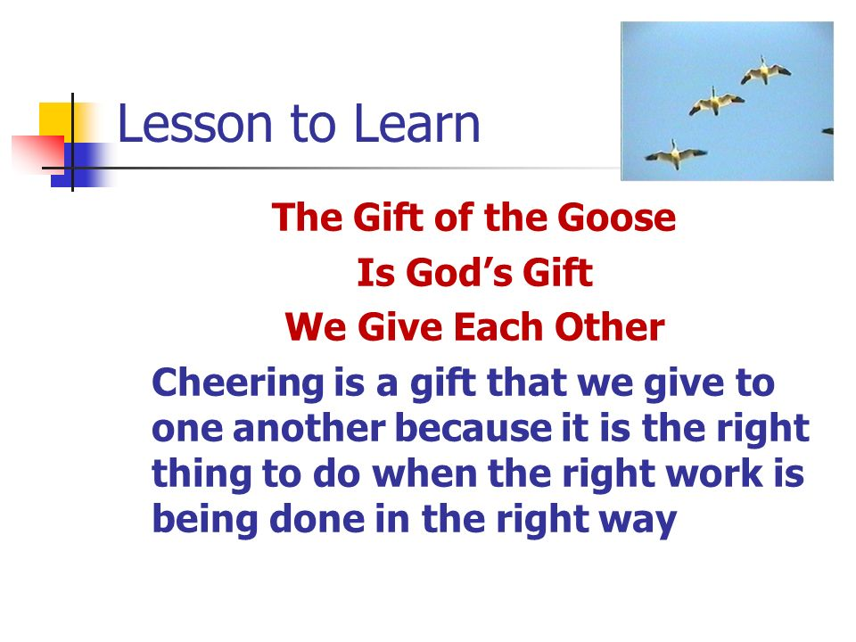 Lesson to Learn The Gift of the Goose Is God's Gift We Give Each Other