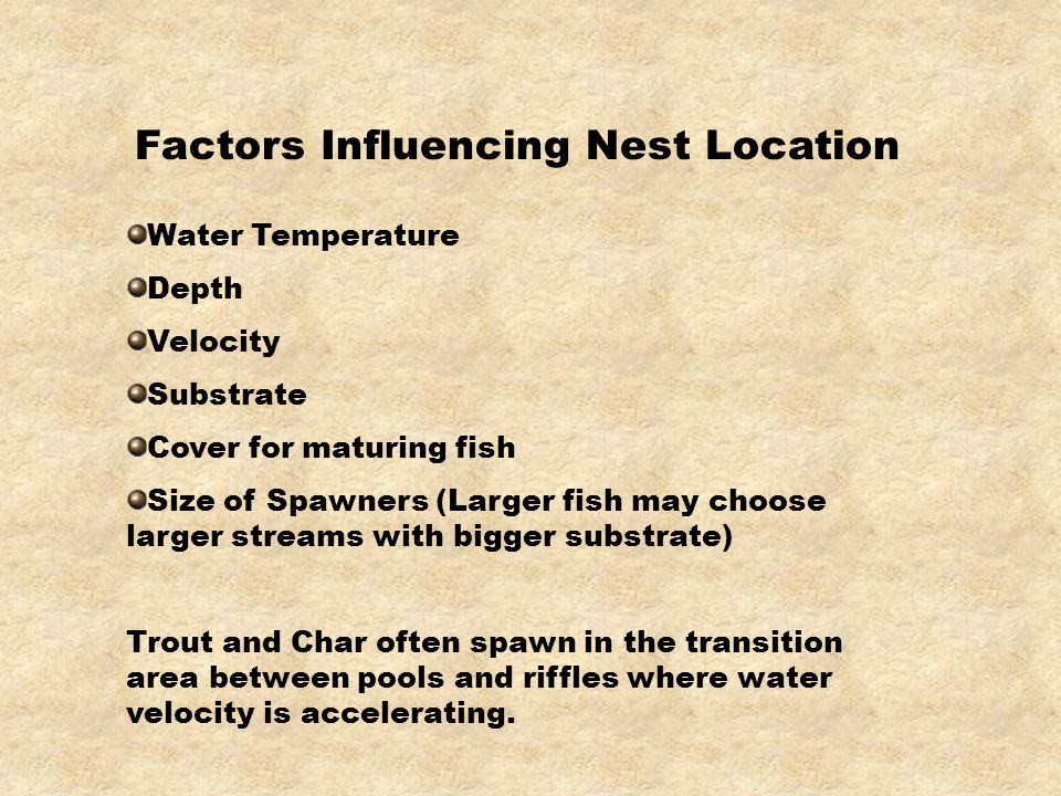 Factors Influencing Nest Location