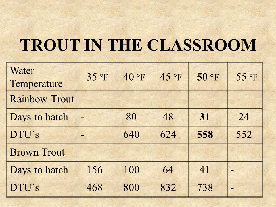 TROUT IN THE CLASSROOM Water Temperature 35 °F 40 °F 45 °F 50 °F 55 °F