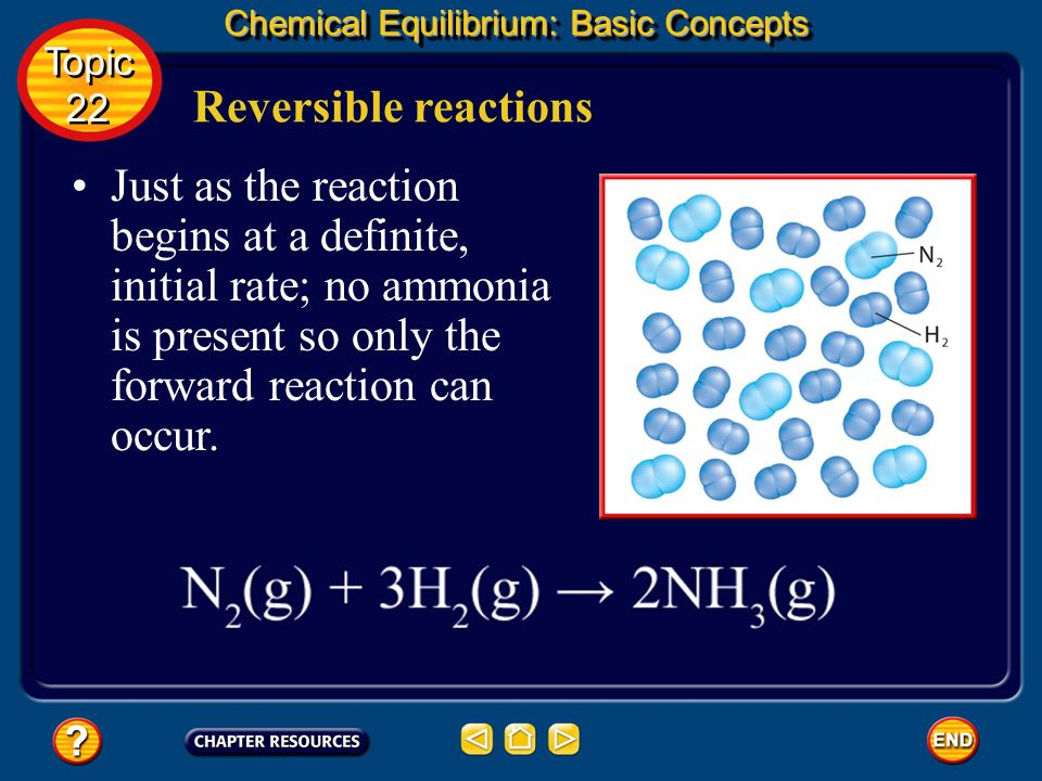 Chemical Equilibrium: Basic Concepts
