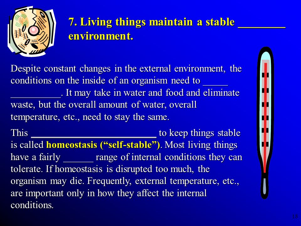 7. Living things maintain a stable ________ environment.
