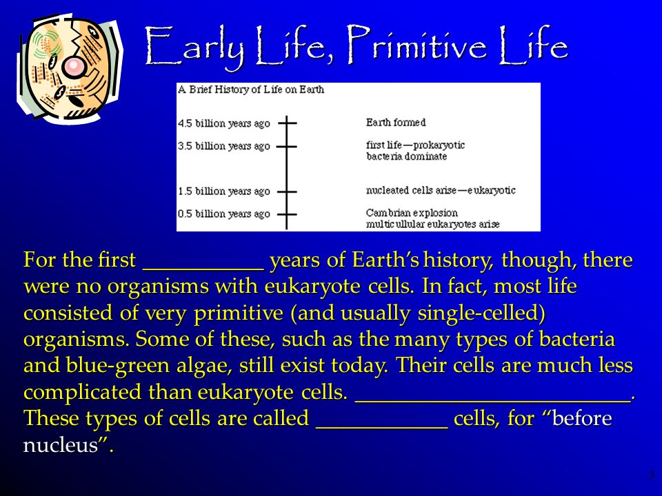 Early Life, Primitive Life