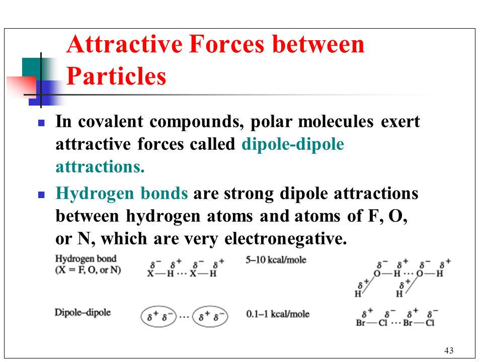 Attractive Forces between Particles