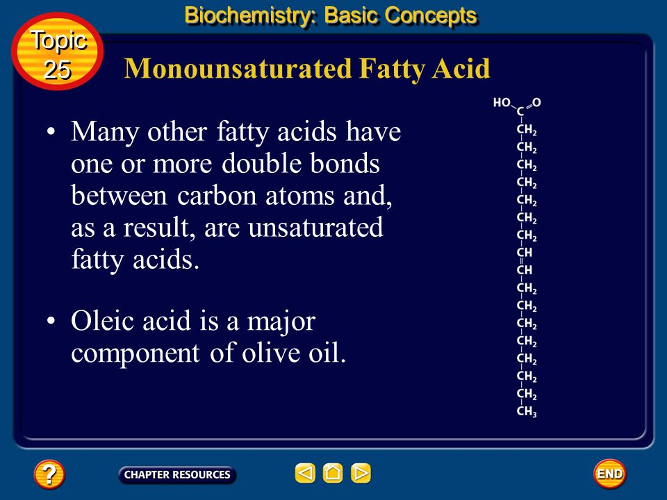 basic concepts in biochemistry pdf