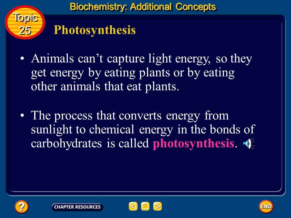 Biochemistry: Additional Concepts
