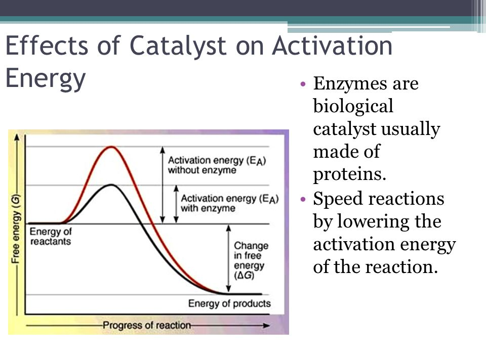 Effects of Catalyst on Activation Energy